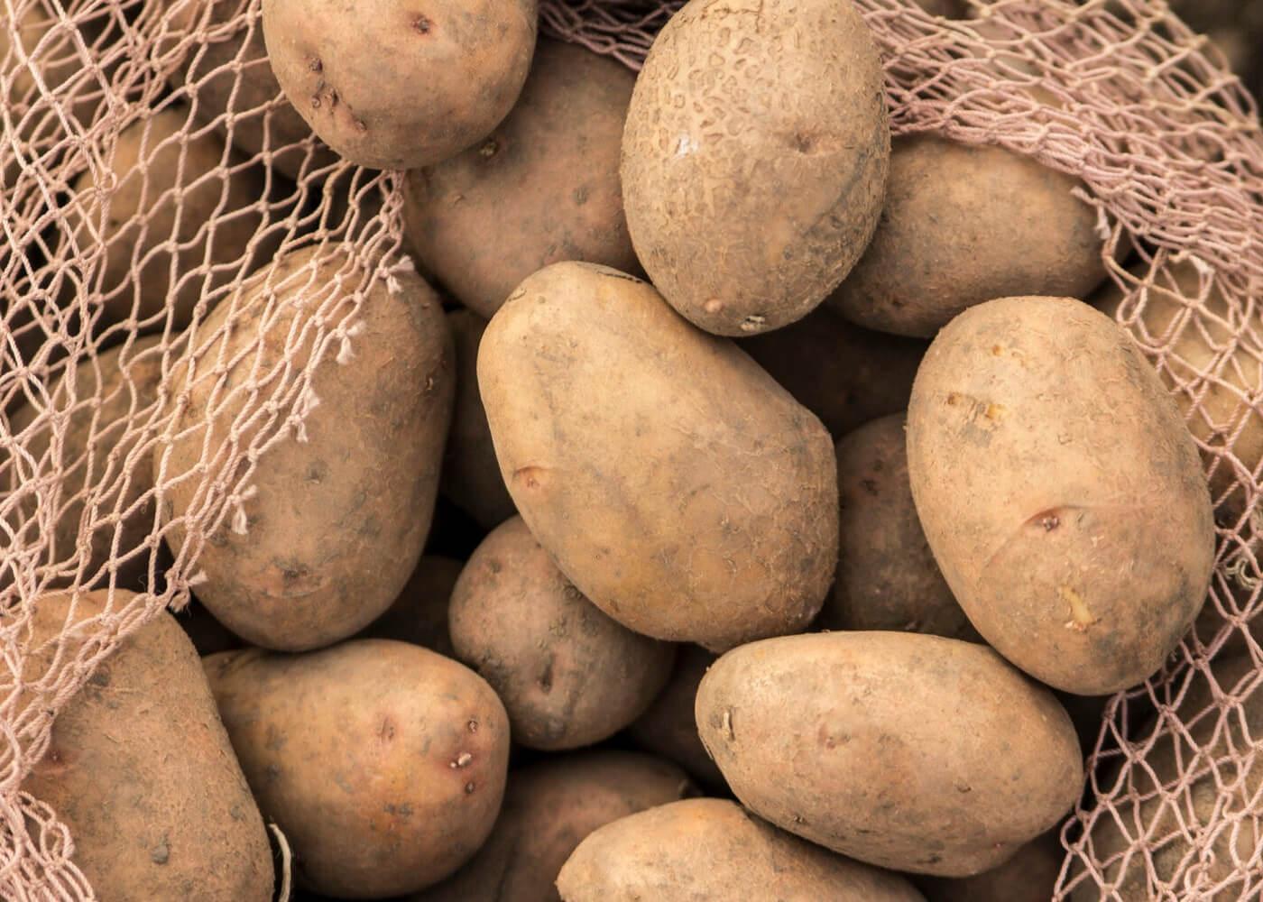 4.1.1 Ulaganja u skladišne kapacitete za krumpir